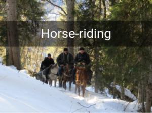 svaneti horse tours
